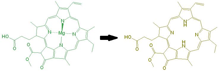 broken down chlorophyll